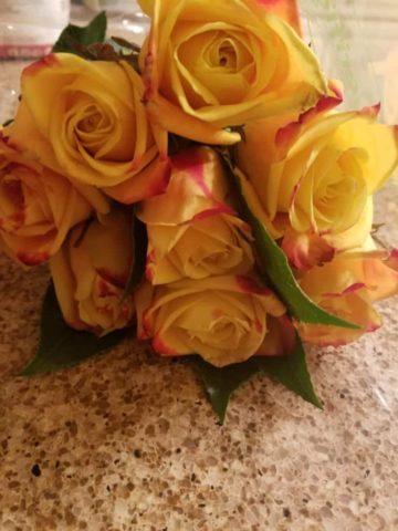 Trader Joe's Roses