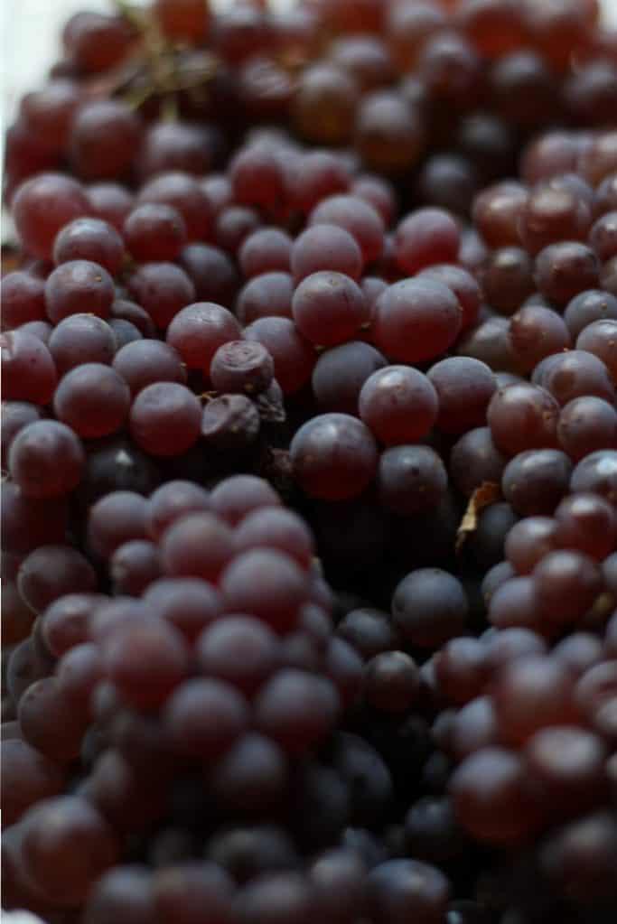 Trader Joe's Champagne Grapes