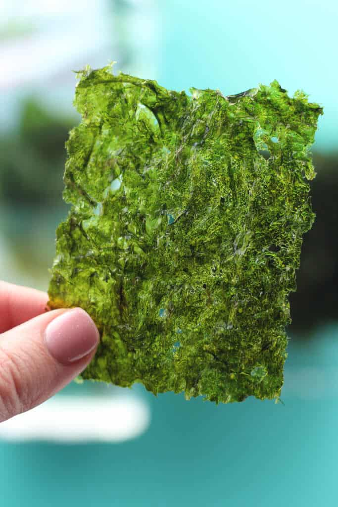 Trader Joe's Wasabi Roasted Seaweed Snack close up