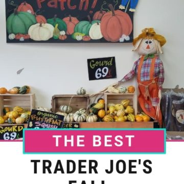Best Trader Joe's Fall products Pinterest Image