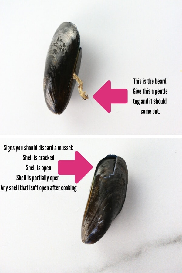 A diagram explaining what a beard is and what to look for in an unsafe mussel
