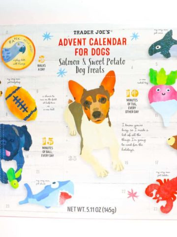 An unopened box of Trader Joe's Advent Calendar for Dogs
